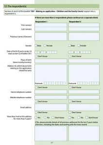 c100 form page 15